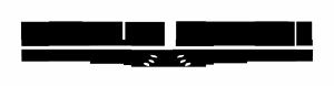 WS Logo Black
